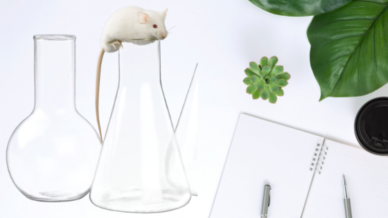 white mouse on beaker with journal and pen