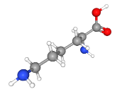chemical structure of lysine, an amino acid used in the composition of custom diets